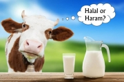 The color of the milk with the judgment Halal haram