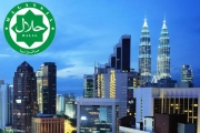 Halal in Malaysia: beyond food and drink sector , Article